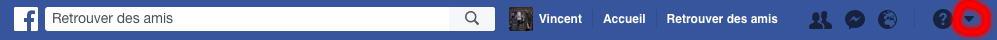Allez dans le menu Facebook