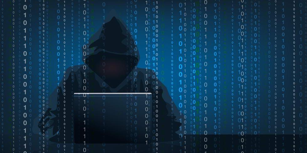 -professionnels-cybercriminalite